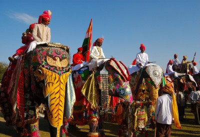 фестиваль слонів