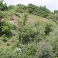 Лиса гора