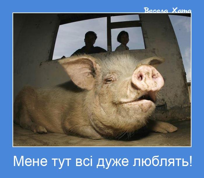 Боевики требуют обменять заложников-украинцев на серийных убийц, - Ирина Геращенко - Цензор.НЕТ 5899