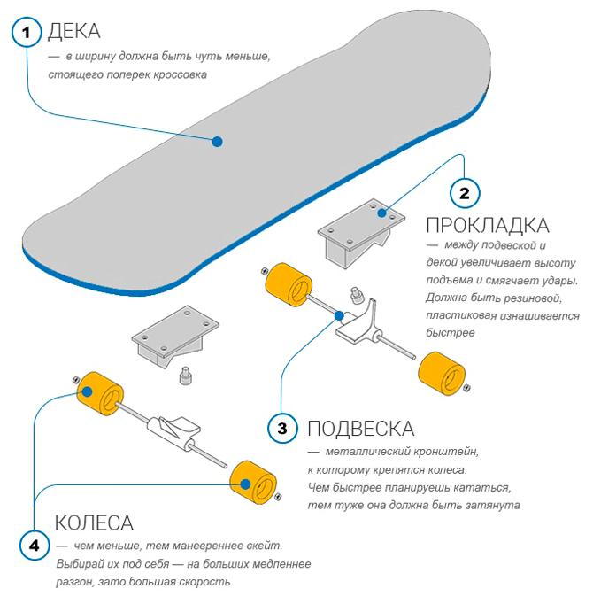 Как выбрать скейтборд? Виды скейтбордов